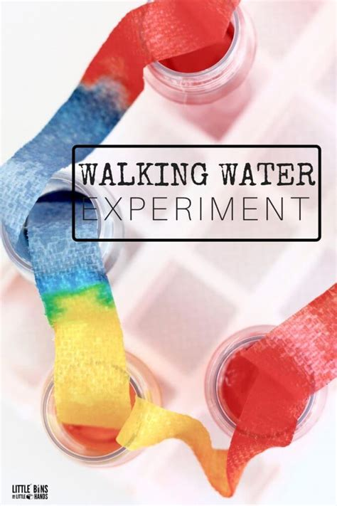 Walking Water Science Experiment for Kids STEM and Rainbow
