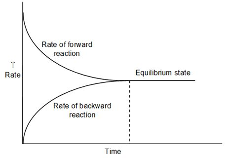 Equilibrium - Study Material for IIT JEE   askIITians