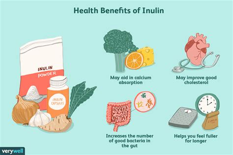 Inulin: Benefits, Dosage, Side Effects, Preparation, and