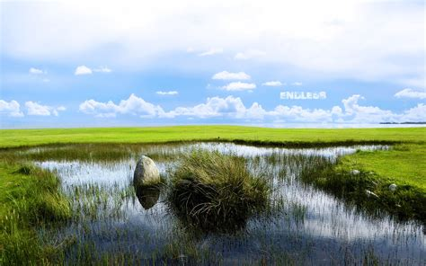 The meaning and symbolism of the word - Marsh